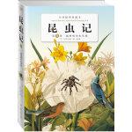 昆虫记:第九卷圆网蛛的电线报