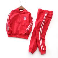 儿童运动套装两件套拉链衫男童女童开衫春秋装卫衣