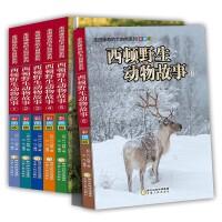 西顿野生动物故事集动物小说6册 小学生三四五六年级课外书必读老师推荐动物故事书