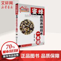 农村书屋系列-蜜蜂高效养殖技术一本通 杨冠煌