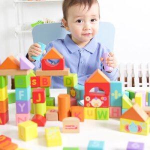 【当当自营】费雪 Fisher Price 80粒益智积木 益智智力大块数字字母木制玩具 FP6002
