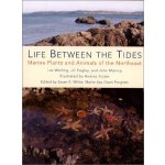 Life Between the Tides: Marine Plants and Animals of the No