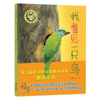 明天原创图画书-我看见一只鸟