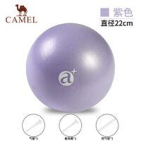 骆驼迷你普拉提球小球瑜伽球正品健身球收身球加厚儿童孕妇瑜珈球