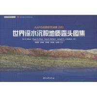 世界深水沉积地质露头图集(56) 石油工业出版社