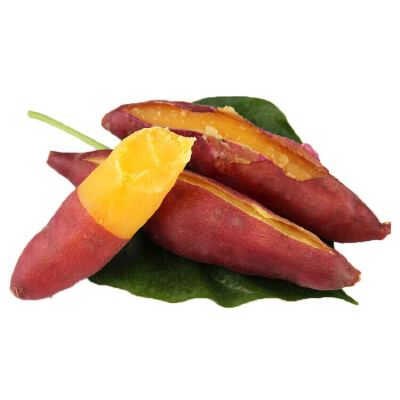 【包邮】河南沙地板栗薯5斤装 红薯地瓜粉糯香甜 现挖现发
