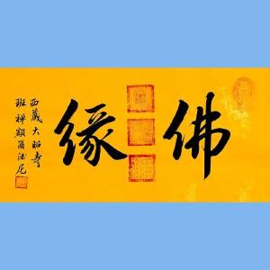 中国佛教协会副会长,中国佛教协会西藏分会第十一届理事会会长十三届全国政协委员班禅额尔德尼确吉杰布(佛缘