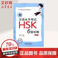 新汉语水平考试HSK(六级)攻略:阅读 北京大学出版社