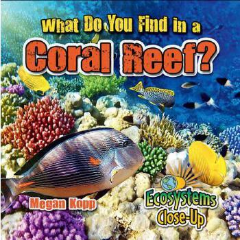 【预订】What Do You Find in a Coral Reef? 预订商品,需要1-3个月发货,非质量问题不接受退换货。