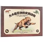 动物大百科·大小能目测的史前动物