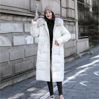 棉服 女士大毛领过膝花苞袖中长款连帽棉衣2019年冬季新款韩版时尚潮流女式宽松休闲女装棉外套