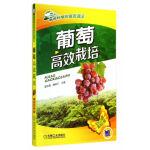 葡萄高效栽培(高效种植致富直通车)