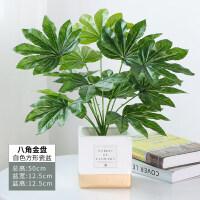 北欧仿真植物装饰创意小摆件客厅桌面盆栽家居室内假绿植盆景