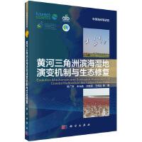 黄河三角洲滨海湿地演变机制与生态修复