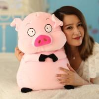 毛绒玩具猪女生布娃娃公仔可爱睡觉抱女孩儿童公主