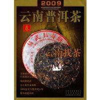 2009云南普洱茶―春