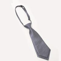 领带 男女士条纹蝴蝶结箭头领带2020年新款时尚男女式时尚休闲职业领结