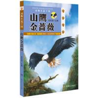 动物小说王国:山鹰金蔷薇(第2辑) 沈石溪() 9787535891280