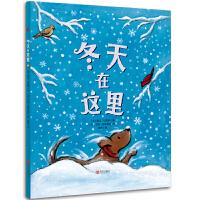 冬天在这里 凯迪克大奖和纽伯瑞儿童文学奖双料得主凯文・汉克斯 冬天之歌