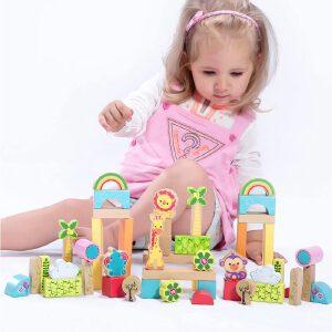 【当当自营】费雪 Fisher Price 50粒森林积木 大块动物植物益智智力木制玩具 FP6004A