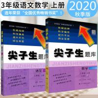 2020秋 尖子生题库三年级语文数学上册全2本人教版小学生课本同步
