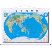 世界地图挂图(地形版 2米*1 5米 4全开专业挂图) 9787503171550 中国地图出版社 中国地图出版社