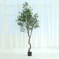 纺真盆景塑料花 北欧仿真绿植橄榄树盆栽大树植物家居办公橱窗装饰摆件B 240CM橄榄树