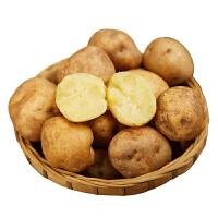 湖北恩施硒土豆净重5斤小土豆黄心黄皮当季新鲜蔬菜包邮