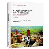 小城镇的可持续性:经济、社会和环境创新