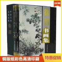 徐渭书画集全2册16开精装铜版纸彩印中国书画家名家画集