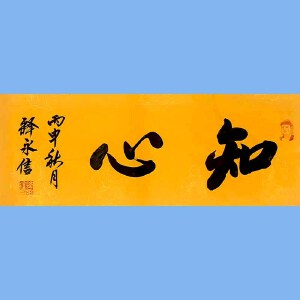 第九十十一十二届全国人大代表,少林寺方丈释永信(知心)