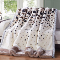 冬季拉舍尔毛毯双层加厚珊瑚绒保暖婚庆盖毯单双人学生双面绒毯子 200*230cm 9斤送包装