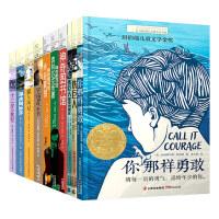 长青藤国际大奖小说套装系列・第二辑(全10册 当当精选)