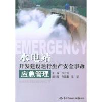水电站开发建设运行生产安全事故应急管理 李丹锋