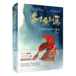 知鱼知画 子青左的水彩私享笔记(全彩)