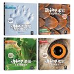 动物艺术家 思维游戏翻翻书(全4册)