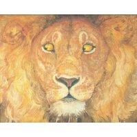 英文原版 The Lion & the Mouse 狮子和老鼠-2010凯迪克金奖绘本