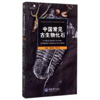 中国常见古生物化石/自然观察手册/好奇心书系