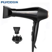 飞科(FLYCO)电吹风FH6101 吹风机 大功率 吹风筒 发廊家用负离子冷热风 理发店电吹风机