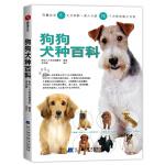 狗狗犬种百科(血统、种类、性格、饲育重点……360度全方位了解各种汪星人)