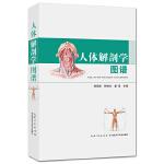 【新书店正版】人体解剖学图谱徐国成湖北科学技术出版社9787535276834