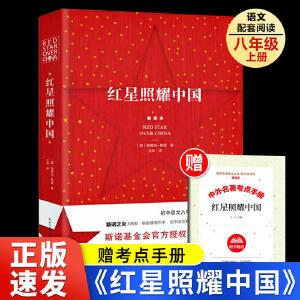 时间的礼物 时间旅行者(全2册)画给孩子的世界文化遗产5-12岁儿童课外书人文科普读物自然历史绘本洋洋兔童书儿童历史百科绘本