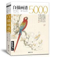 白描画谱5000例・中册・禽鸟走兽