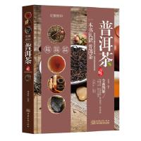 品鉴系列 优雅醇和:普洱茶品鉴 9787510316784 林婧琪 中国商务出版社