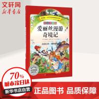 爱丽丝漫游奇境记(彩绘注音版) 四川少年儿童出版社