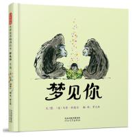 梦见你――(2018年凯迪克金奖得主:马修?科德尔 最新作品!)