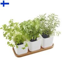 【当当海外购】芬兰进口Orthex自动补水种植盆花盆3件装(附赠精美北欧竹木托盘)
