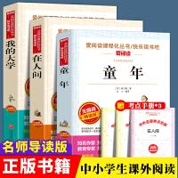 高尔基四部曲精装版全4册 童年 在人间 我的大学 母亲世界经典文学小说全译本初中高中小学青少版世界文学小说名著
