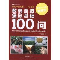 数码单反摄影基础100问 (日)冈�牒托�