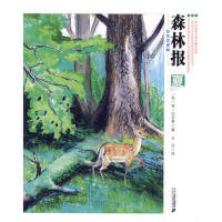 ●【四色】森林报--夏 (苏)比安基,王汶 9787539153254